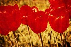 De uitstekende achtergrond van Grunge van bloemen (tulpen) Royalty-vrije Stock Foto