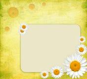 De uitstekende bloemenkaart van de de lentegroet Stock Foto's