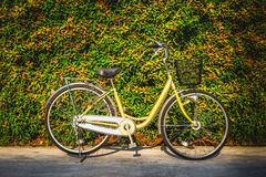 De uitstekende fiets op de kleurrijke achtergrond van de bladerenmuur stock fotografie
