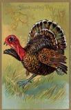 De uitstekende kaart van Thanksgiving day Royalty-vrije Stock Foto
