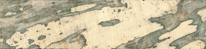 De uitstekende overzichten van het kaartcontinent spalted hout stock foto