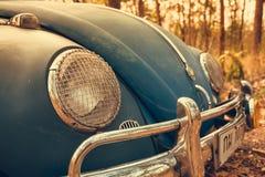 de uitstekende retro blauwe kleur van autovolkswagen in Forest Leaves Brown Royalty-vrije Stock Foto