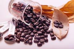 De uitstekende toon van koffiebonen, de achtergrond van het kunstwerk Royalty-vrije Stock Fotografie