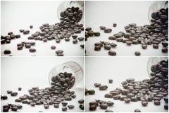 De uitstekende toon van koffiebonen, de achtergrond van het kunstwerk Stock Foto's