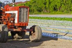 De uitstekende tractor van Olf op gecultiveerd land Royalty-vrije Stock Foto's