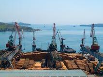 De uitvoer van het hout in Vladivostok Stock Afbeeldingen