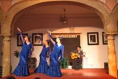 De uitvoerders van de flamencodans stock afbeelding