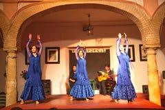 De uitvoerders van de flamencodans stock afbeeldingen
