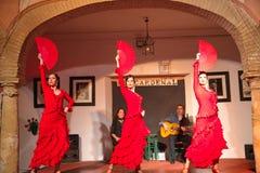 De uitvoerders van de flamencodans stock foto's