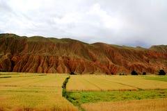 De unika landformsna av Gansu, Kina Royaltyfria Bilder