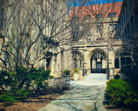 De Universitaire Campus van Chicago Stock Fotografie