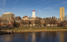 De Universitaire Campus van Harvard Stock Foto's