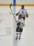 De Universitaire spelers van Clarkson in NCAA het Spel van het Hockey royalty-vrije stock afbeeldingen
