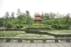 De Universitaire tuin van Sichuan China Stock Foto's