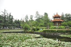 De Universitaire tuin van Sichuan China Royalty-vrije Stock Afbeelding