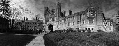 De Universiteit van Princeton Stock Foto's