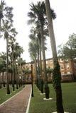 De Universiteit van Stetson in DeLand Royalty-vrije Stock Foto