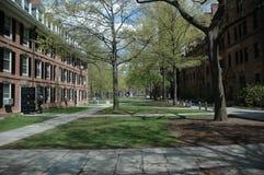 De Universiteit van Yale royalty-vrije stock afbeelding