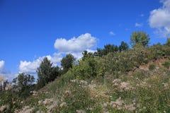 De Ural-heuvels in de zomer royalty-vrije stock afbeeldingen
