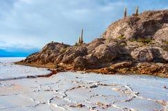 印加瓦西峰海岛在撒拉族de Uyuni 流星锤 免版税库存图片