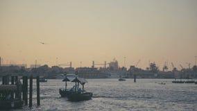 De V.A.E, 2017: De Kreek van Doubai Vreedzame atmosfeer: zeehavenstad bij zonsondergang stock footage