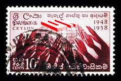 De V.N.-embleem, Verklaring van Rechten van de mens, 10de Verjaardag serie, Stock Foto