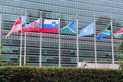De V.N.-vlaggen Stock Afbeeldingen