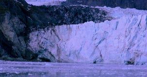 De V.S., Alaska, het Nationale Park van de Gletsjerbaai, Wereldnatuurlijk erfgoed stock videobeelden