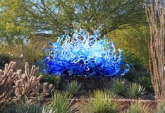 DE V.S., AZ: Chihulytentoongesteld voorwerp - Blauwe Fiori-Zon, 2013 Stock Fotografie