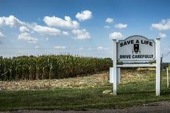 De V.S. - Ohio - Amish stock afbeeldingen