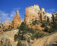 De V.S. Utah Bryce Canyon Royalty-vrije Stock Foto