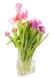 De vaas van de tulp Stock Afbeeldingen