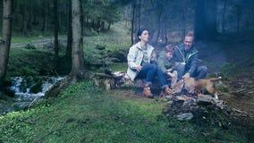 De vader, baart een kleine zoon die de heemst in het bos roosteren stock videobeelden