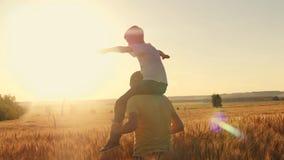 De vader draagt zijn zoon op zijn schoudersa gang op het tarwegebied tijdens zonsondergang Familiespel stock videobeelden