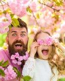 De vader en de dochter op gelukkig gezicht spelen met bloemen als glazen, sakuraachtergrond Meisje met papa dichtbij sakurabloeme stock foto