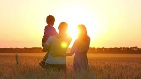 De vader en de moeder richten het kind aan de horizon op een tarwegebied Gelukkige familie bij zonsondergang Landbouw, verhouding stock videobeelden