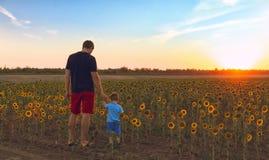 De vader en de zoon bewonderen de schilderachtige zonsondergang op het gebied met zonnebloemen stock foto