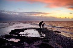 De vader en de zoon lopen langs de kust bij zonsondergang op het zuidelijke uiteinde van Saaremaa, Estland royalty-vrije stock foto