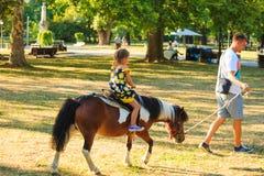 De vader neemt zijn weinig dother voor een rit op poneypaard in park Royalty-vrije Stock Foto