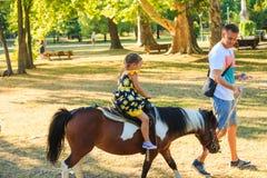 De vader neemt zijn weinig dother voor een rit op poneypaard in park Stock Foto's
