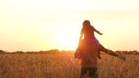 De vader vervoert zijn zoon op zijn schouders door een tarwegebied bij zonsondergang Silhouet van een gelukkige familie bij zonso stock videobeelden
