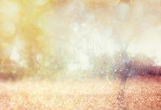 De vage abstracte foto van licht barstte onder bomen en schittert bokeh lichten Royalty-vrije Stock Afbeeldingen