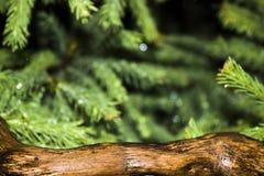 De vage achtergrond van de Kerstmisboom en a en de houten oppervlakte van de boomboomstam in de voorgrond - de scherpte op het royalty-vrije stock afbeelding