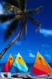 De vakantie is in keerkringen Stock Foto