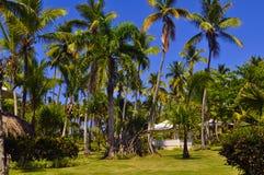 Dominicaanse republiektoevlucht Royalty-vrije Stock Afbeeldingen