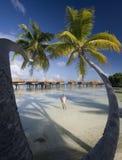 De Vakantie van de luxe - Franse Polynesia - Stille Zuidzee Stock Foto's