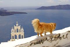 De vakantie van Griekenland Stock Afbeeldingen