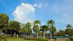 De Vakantie van het paradijs Stock Afbeelding