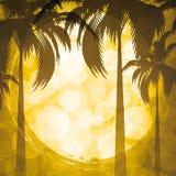 De vakantieachtergrond van de zomer Stock Foto's