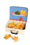De vakantiegeheugen van de herfst Royalty-vrije Stock Foto